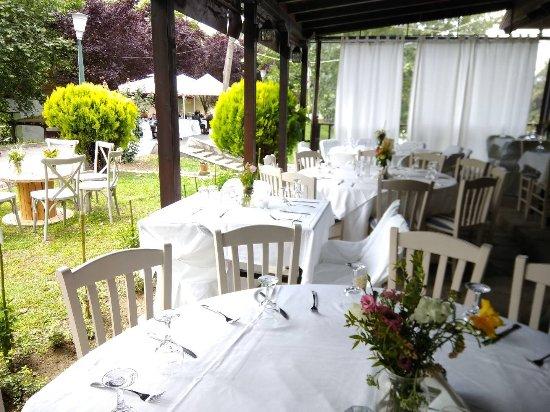 Λουδίας Cafe Restaurant