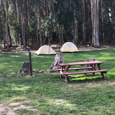 Tent Camping - Review of Costanoa Coastal Lodge & Camp ...