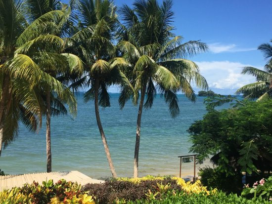 Coconut Grove Beachfront Cottages: View from the room