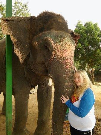 Elefantastic: myself and Sumba the elephant