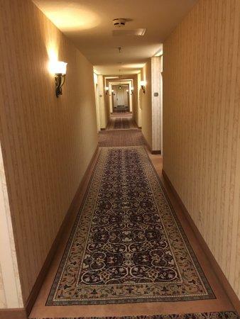 The Saint Paul Hotel: Hallway.