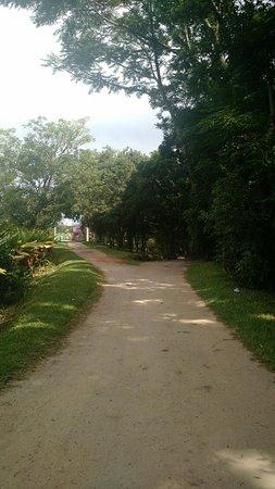 Parque Roberto Burle Marx