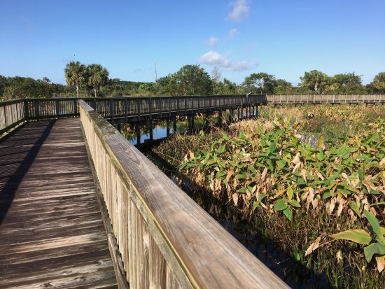 Peaceful Waters Sanctuary: Boardwalk