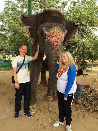 Elefantastic: us and Sumba