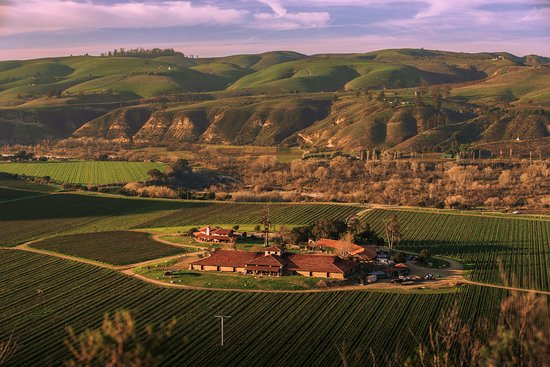 Lompoc, CA: Sanford Winery from above