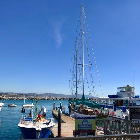 Proud Mary's Restaurant: PROUD MARY's Restaurant, Dana Pt Harbor, CA!  Fantastic Waterfront View!