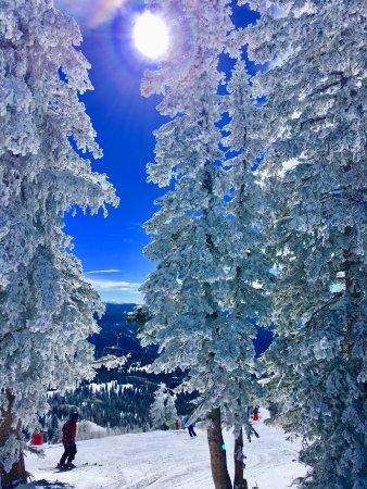 Steamboat Ski Resort Resmi