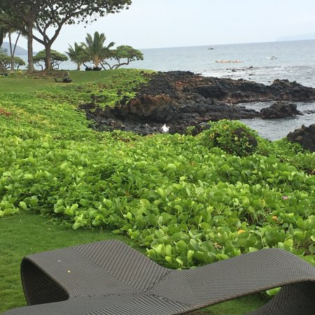 Compare Maui To Big Island