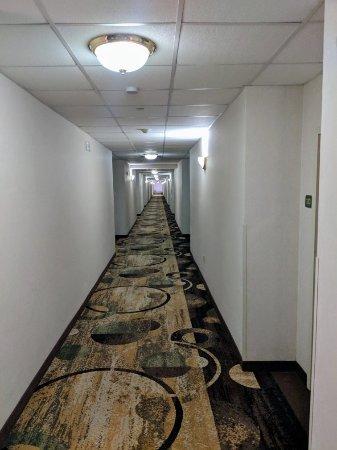 Ashmore Inn & Suites: IMG_20180209_162901_large.jpg