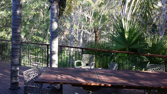 Vincentia, Australia: 20180207_174731_large.jpg