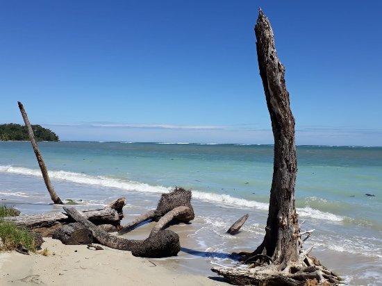 Cahuita, Costa Rica: IMG-20180204-WA0020_large.jpg
