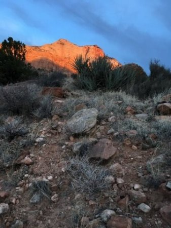 Red Rock Inn Bed and Breakfast Cottages: a little hike up from the hot tub