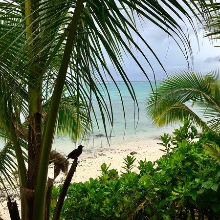 Titikaveka, Islas Cook: photo4.jpg