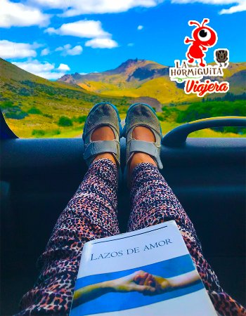 Провинция Рио-Негро, Аргентина: Las vistas mas maravillosas desde un Bus