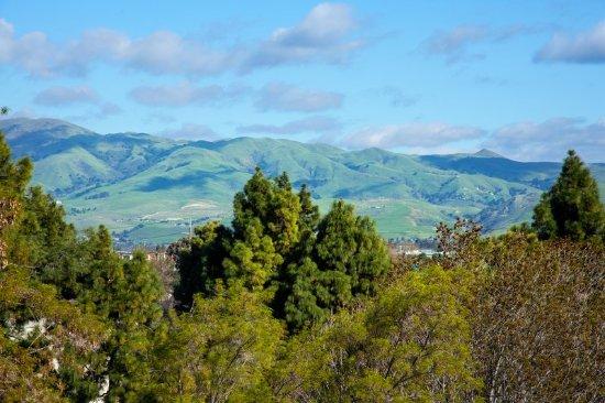 Sheraton San Jose Hotel: Other