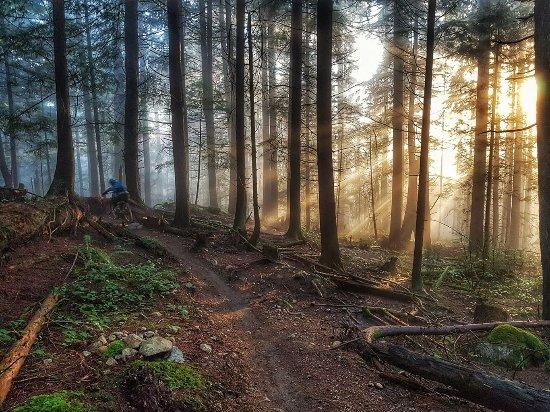Garibaldi Highlands, كندا: Squamish Trails