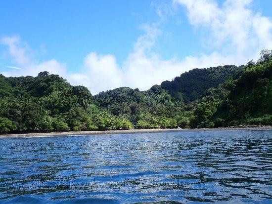 Cocos Island National Park (Puntarenas) - Aktuelle 2019 ...