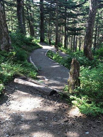 Goldbelt Mount Roberts Tramway : Hiking trail by Nature Center