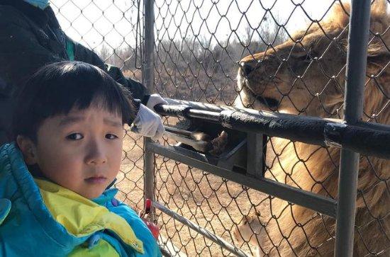 Private Full-Day Beijing Wildlife