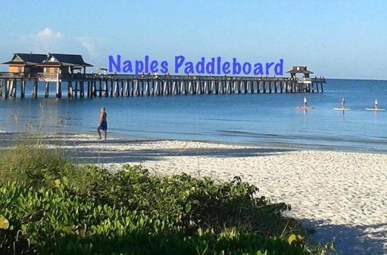 Half day paddle board rental, touring...