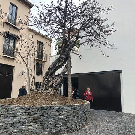 Museo Picasso Malaga: photo0.jpg
