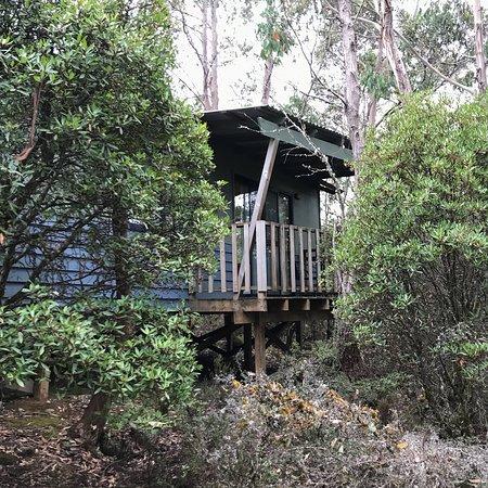 picture of cradle mountain wilderness village. Black Bedroom Furniture Sets. Home Design Ideas