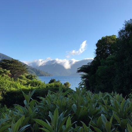 Endeavour Inlet, Новая Зеландия: photo1.jpg