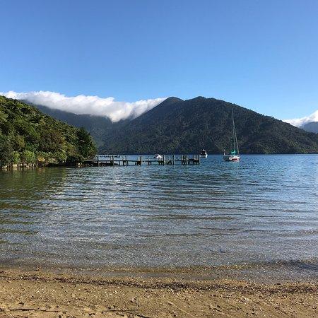 Endeavour Inlet, Новая Зеландия: photo2.jpg