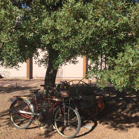 Desert Dove Bed and Breakfast: photo2.jpg