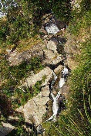 Hazel Park, Australia: Aussies enjoy Agnes Falls Scenic Reserve