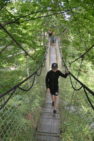 Egeskov Slot: Tree Top Walking