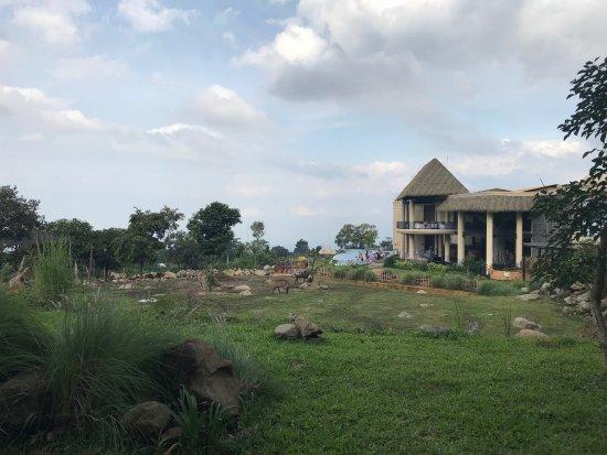 img 20180215 100612 large jpg picture of baobab safari resort rh tripadvisor co nz
