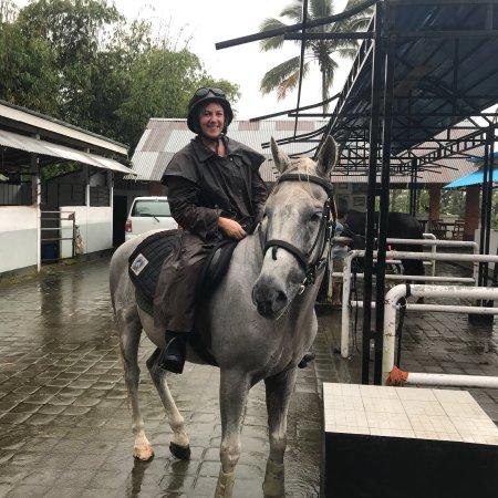 Ubud Horse Stables: photo2.jpg
