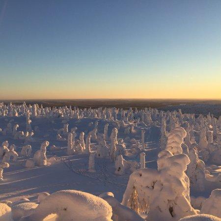 Исо-Сиоте, Финляндия: photo1.jpg