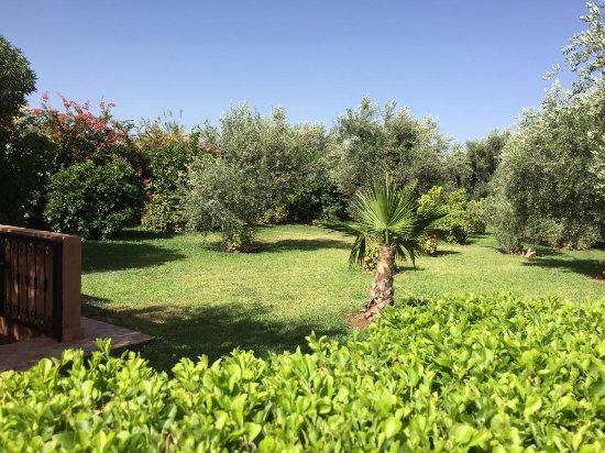 Plats ap ro maison picture of villa tycoz marrakech for Villas de jardin seychelles tripadvisor