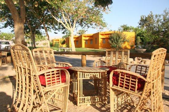 Elifaz - A Desert Holiday Experience