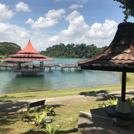 Macritchie Reservoir Singapore All You Need To Know