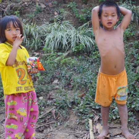 Bamboo Nest de Chiang Rai: photo9.jpg