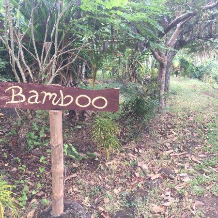 Balgue, Nicaragua: Totoco Eco-Lodge