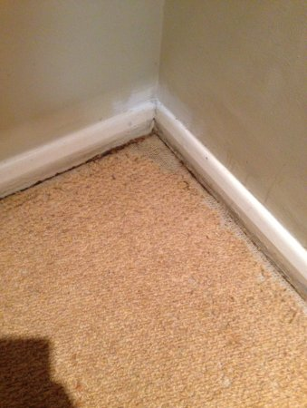 Golant, UK: Poor carpet, poor paint work, poor standards