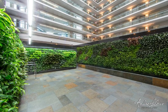 sky garden picture of embassy suites by hilton chicago downtown rh tripadvisor com