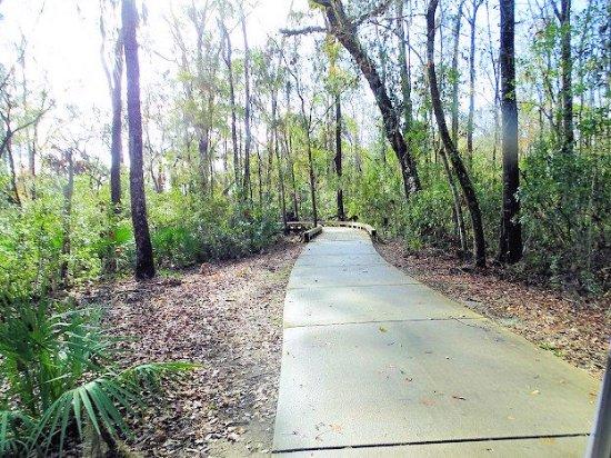 Osprey Cove Golf Club: course