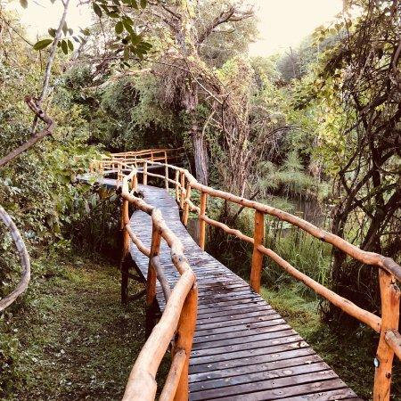 Camp Nkwazi: photo1.jpg