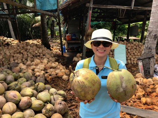 Indochina Odyssey Tours: Look at the big coconuts! ;-)