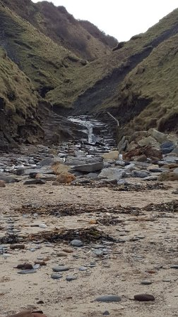 Runswick, UK: 20180210_130100_large.jpg