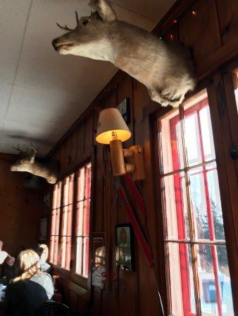 Lutsen, MN: Your dining friends