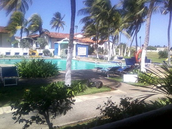 Tropical Refuge : una piscina hermosa
