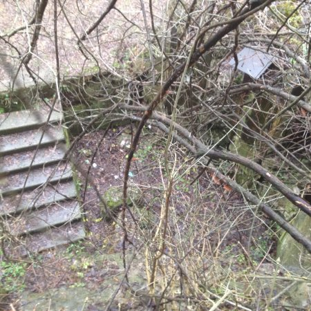 Mohyliv-Podilskyi, أوكرانيا: Это фотографии  уничтоженной верхней части  артиллерийно -пулеметного  двух уровневого  Дота 112