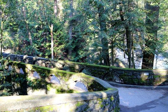 Whatcom Falls Park: Bridge
