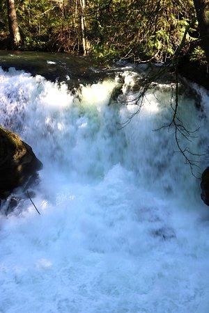 Whatcom Falls Park: Falls